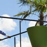 Décoration extérieur avec Jardin Concept